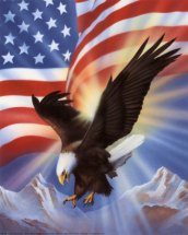 american-eagle-and-flag