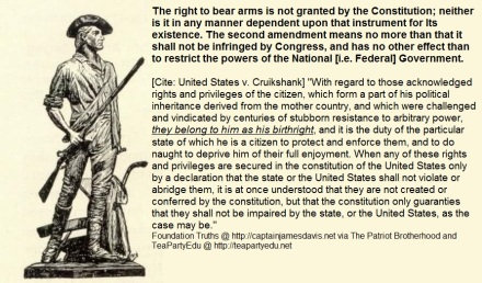 2nd Amendment Militia Right to Bear Arms